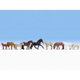 Noch 15761 : Paarden